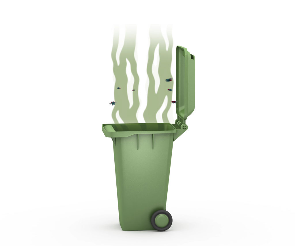 Keep your bin smelling fresh between cleanings  5 things you